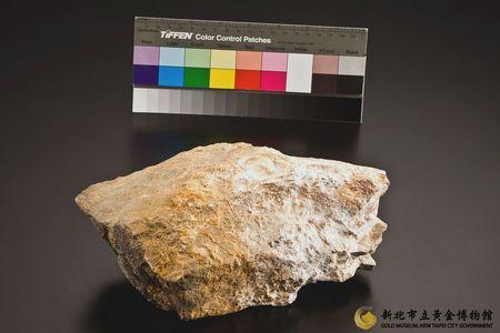 樹梅金礦矽化砂岩(黃)圖1