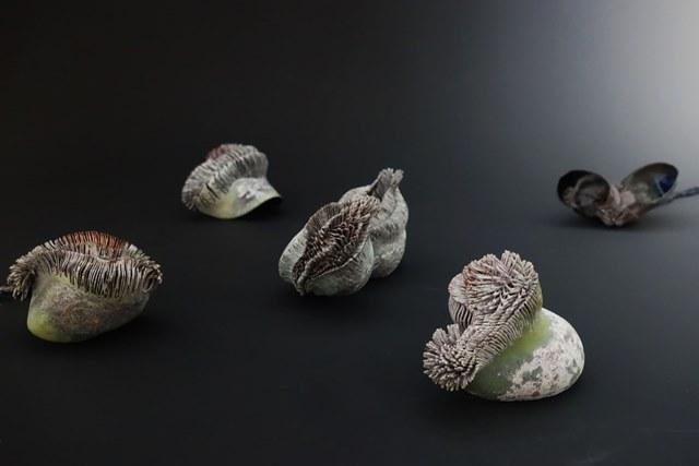 陳亭君2015金工大賽首飾組金質獎得獎作品「視覺修復」